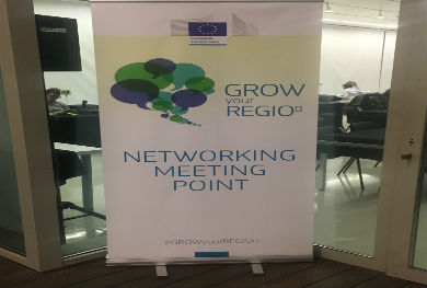 MetaIndustry4 participates in the European Conference Grow Your Region